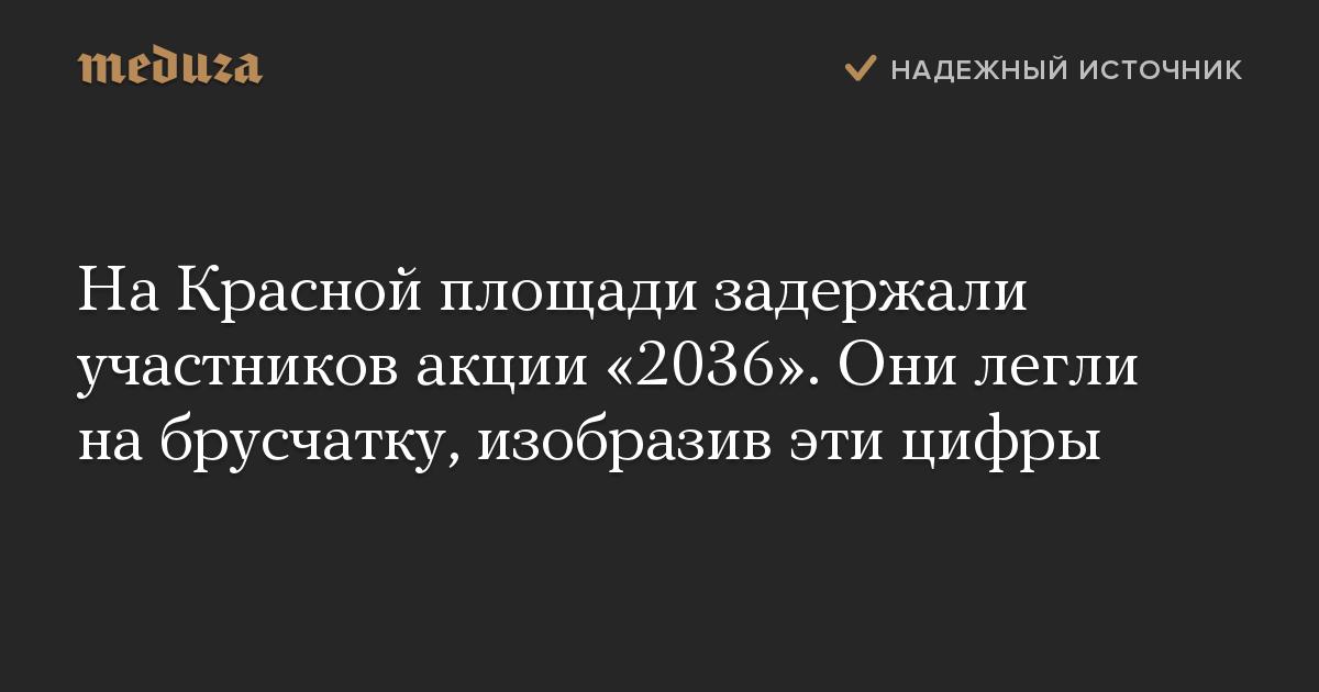 На Красной площади задержали участников акции «2036». Они легли на брусчатку, изобразив эти цифры