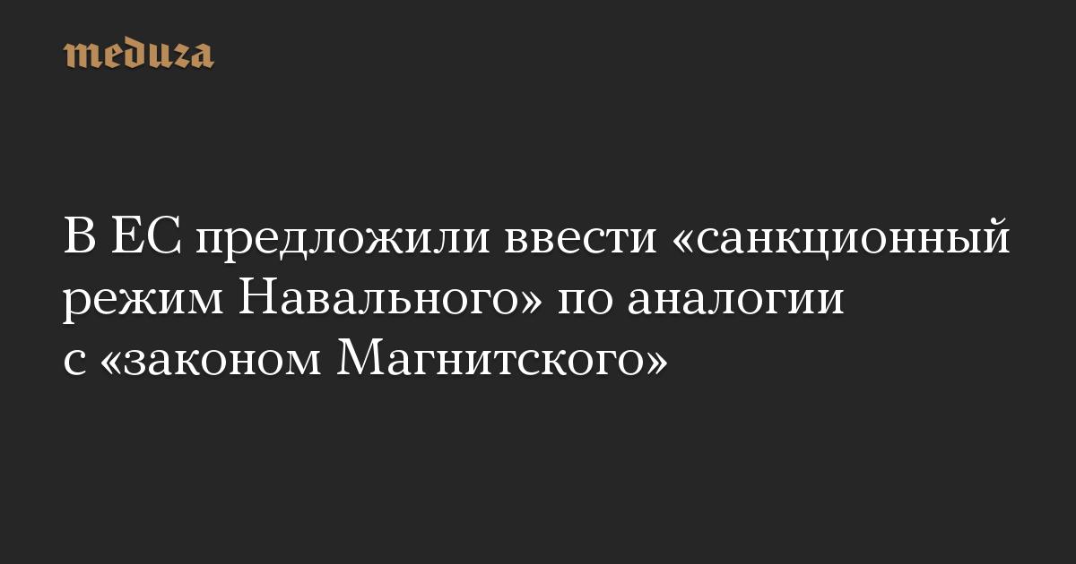 В ЕС предложили ввести «санкционный режим Навального» по аналогии с «законом Магнитского»