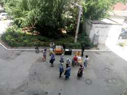 Во дворах проголосовали 350 тысяч жителей области