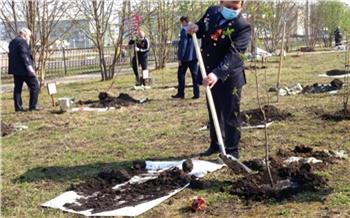 «Сад Памяти»: накануне Дня Победы в шахтерских городах Красноярского края высажены молодые деревья