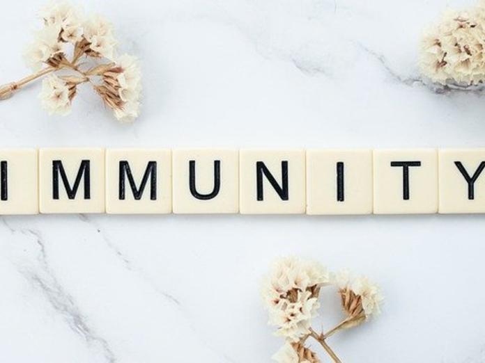 Эпидемиолог прокомментировал ситуацию с иммунитетом к коронавирусу