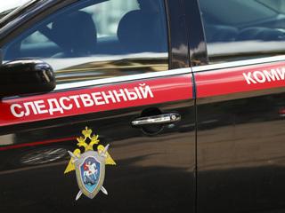 В связи с гибелью двух детей в Москве завели уголовное дело по статье 'Убийство'