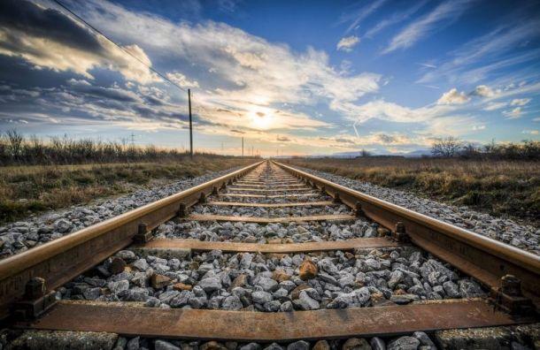 Грузовой поезд сбил насмерть женщину в Ленобласти