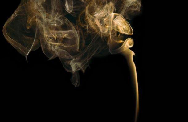 Цены на акцизные сигареты могут вырасти на 20%
