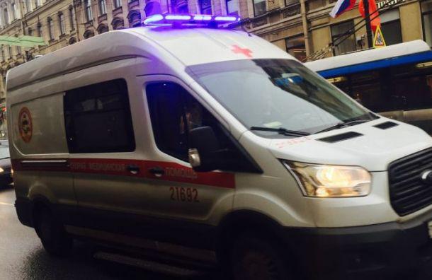 Два человека погибли при столкновении с фурой на трассе 'Кола'