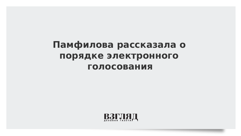 Памфилова рассказала о порядке электронного голосования по Конституции