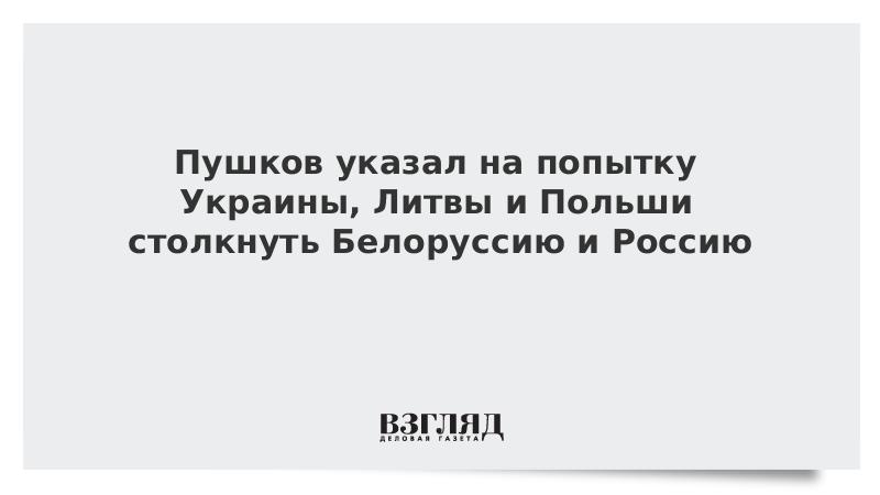 Пушков отметил попытку Украины втянуть Белоруссию в «антироссийские игры»