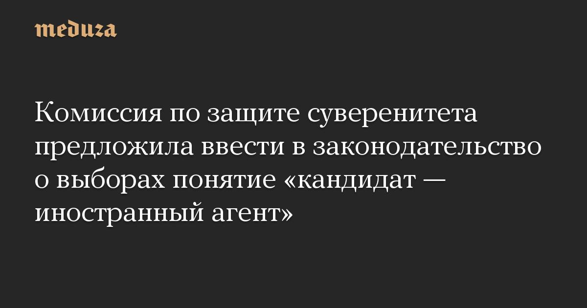 Комиссия по защите суверенитета предложила ввести в законодательство о выборах понятие «кандидат — иностранный агент»
